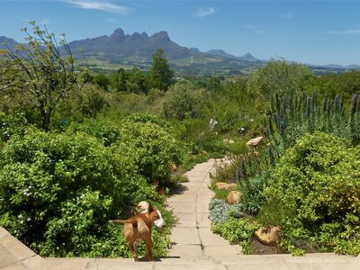 Photo for Stunning Mountain and Sea views in the Cape Winelands