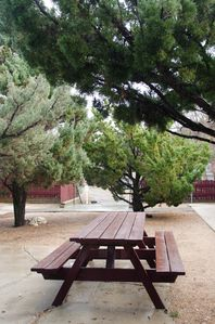 PICNIC TABLE IN COURYARD