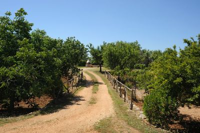 Road to the Trulli