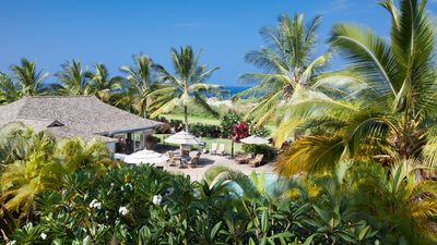 A true oasis with palm trees all around and ocean views