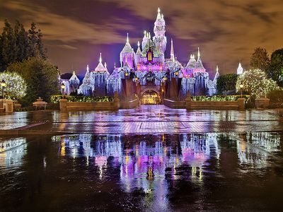 Photo for Capture The Magic And Bring It Home All Within Moments To Main Gate!