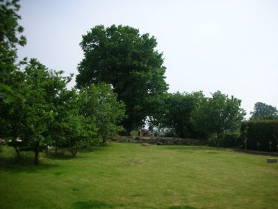 view of part of the back garden surrounded by oaks and fields