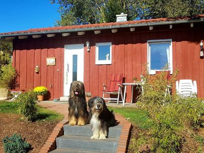 Photo for Cosy holiday home in the Ederbergland region - dogs welcome