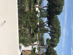 Photo for Bungalow 50 m from the sea in the Marines of Sant Ambroggio