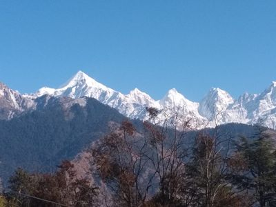 Photo for Thakur Homestay Munsyari With Panchachuli View