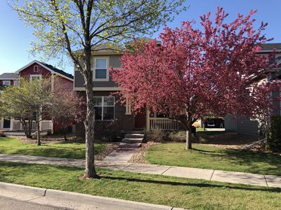 Photo for Cozy 3 Bedroom Home 20 minutes from downtown Fort Collins
