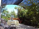 Relax amid the grapevines on the terrace