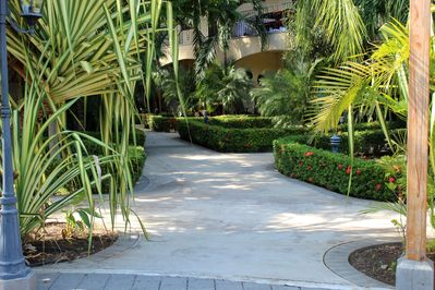 Groomed pathways to condo units in this tropical oasis.