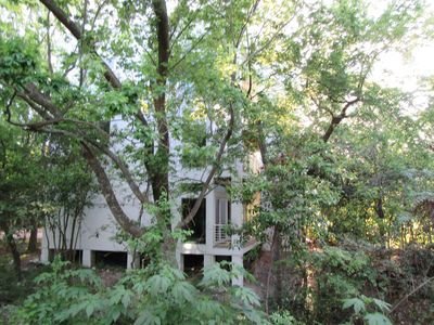 Photo for 1st Flr Apt in Native Woods, Next to Bayou Trails, Washington St / Heights Area