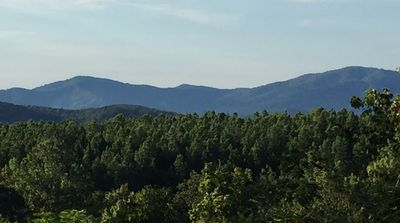 Photo for 1BR Apartment Vacation Rental in Crozet, Virginia