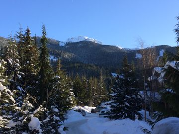Taluswood, Whistler, BC, Canada