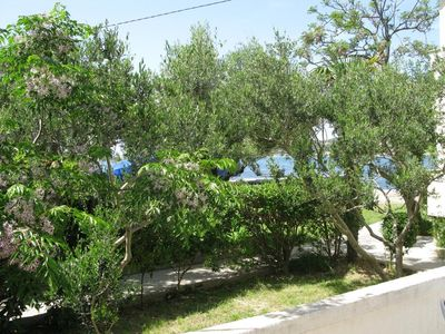 Photo for Apartments Darko (68092-A5) - Supetarska Draga - island Rab