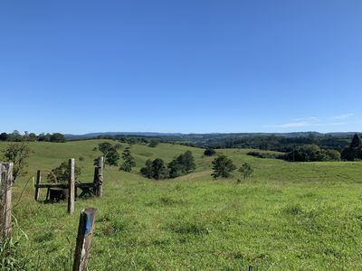 Photo for Nightcap Park, Beautiful Byron Bay Hinterland