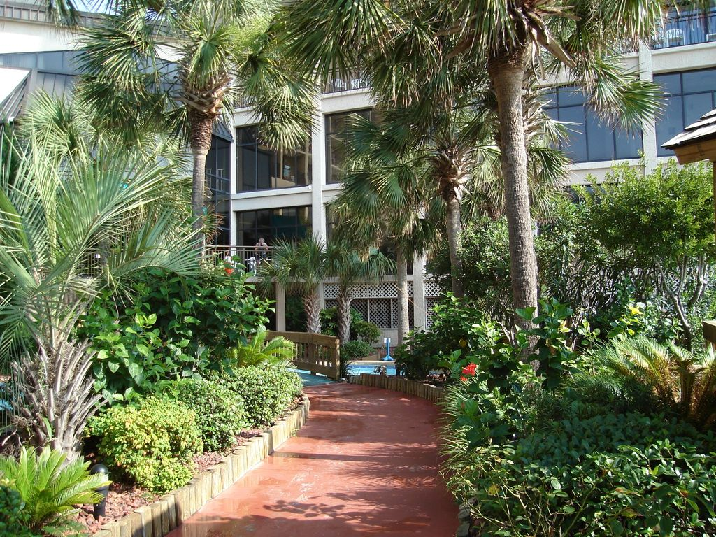 Beach Cove Resort Condo Rentals By Owner