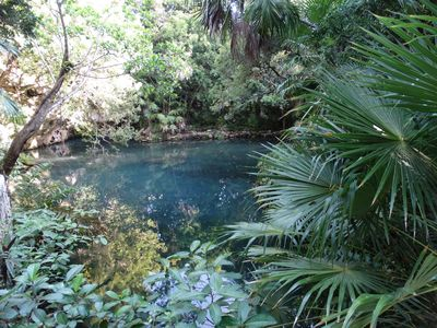 Photo for New 4BB. Cenote view! Resident beach. sleeps 11