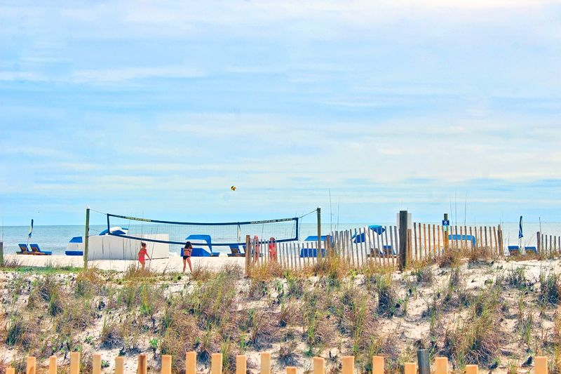 Island Sunrise 563 - Affordable Beach Front Condo!  Private Balcony. Plenty of Space for a Small Family or Group of Friends.  Free Wi-Fi and a Pool!  Located in the Heart of Gulf Shores.  Walking Distance to Stores and Retail Shops.