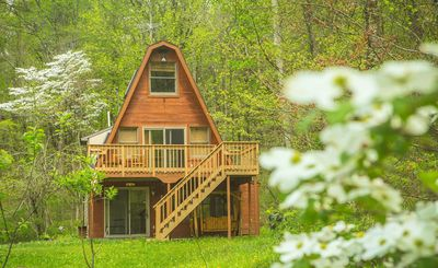 Photo for Hocking Hills Cabin with HotTub, Wifi, FirePit, Walking Trail and Pond