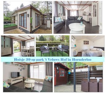 Photo for Veluwe: comfortable houses with garden in a beautiful child-friendly park