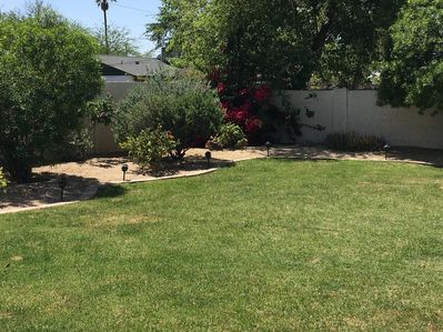 Guests spend most time in the backyard.