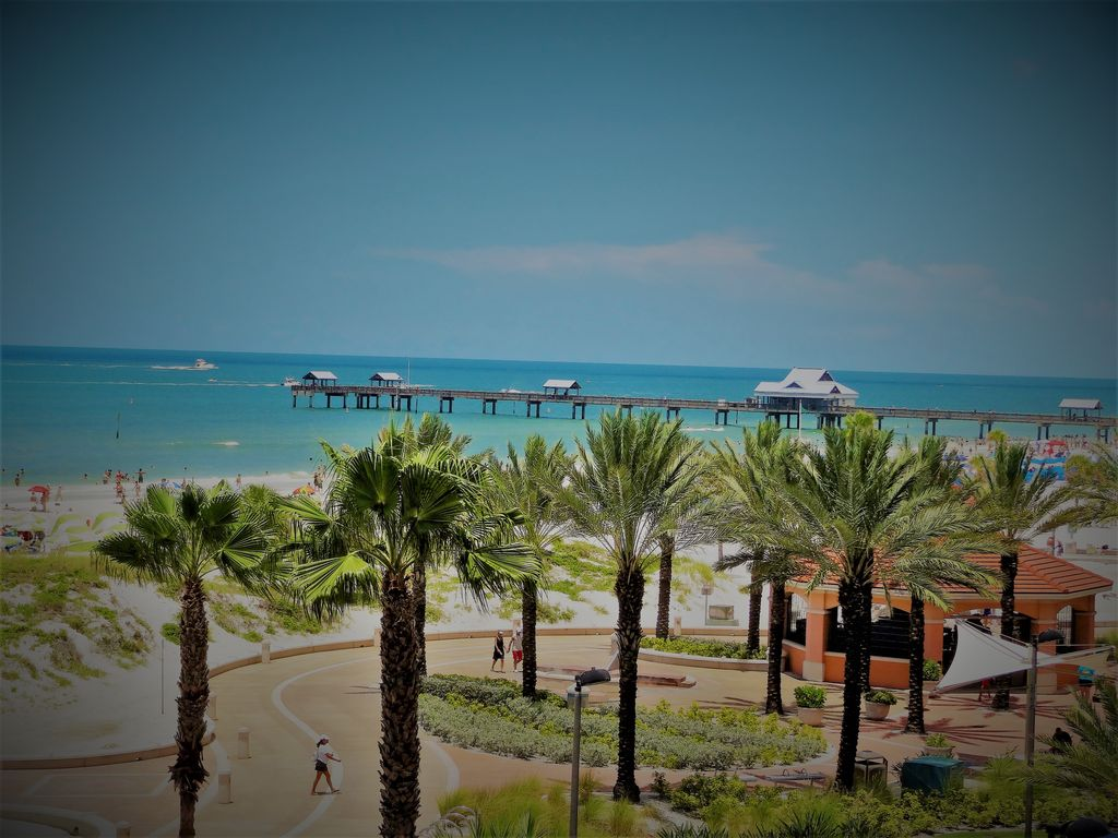 Clearwater Beach Modern One Bedroom Vrbo