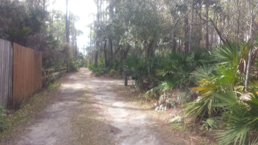 ... Cape San Blas. Driveway To The Cabin Very Private!
