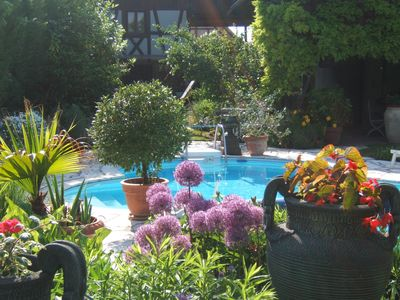 Photo for Gite in charming house in the heart of Alsace Sundhouse a garden and pool