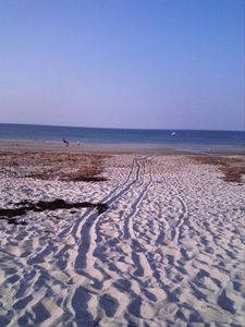 Photo for BEACH FRONT PROPERTY/WHITE HORSE BEACH***The Perfect Place to Relax