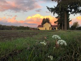 Photo for 1BR Campground Vacation Rental in Hubbard, Oregon