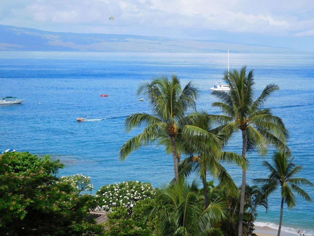 The Whaler - Beautiful Ocean View on Kaanapali Beach - Book Now!