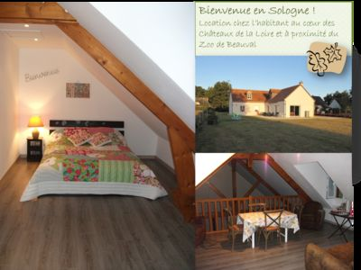 Photo for In Sologne for 4 people: in the heart of the Castles of the Loire & Beauval zoo