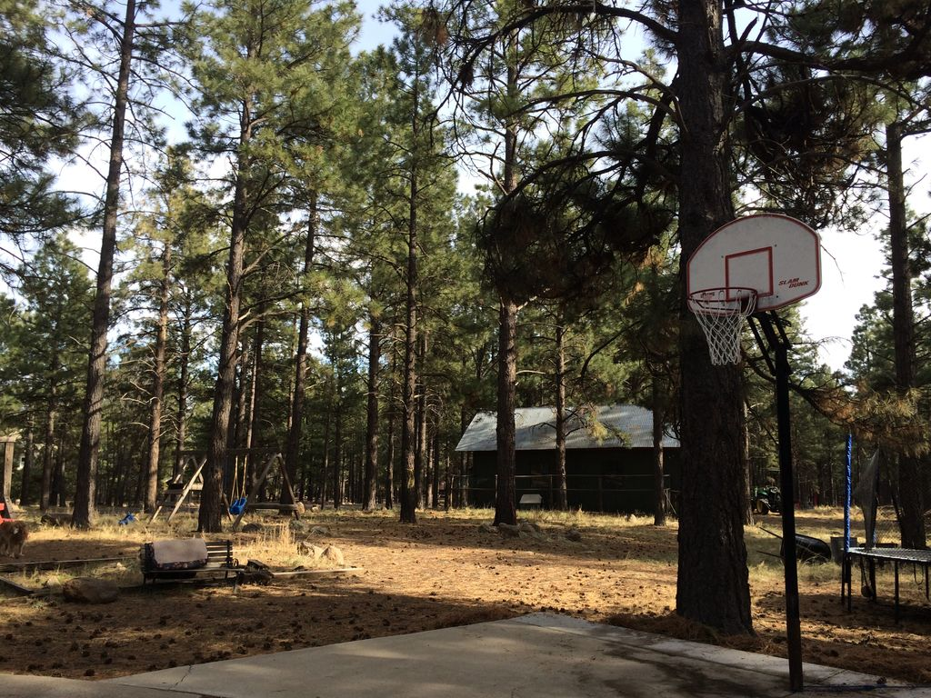 Large Luxury Flagstaff Home In Pines Hot Tub 2 5 Acres