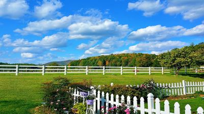 Pristine Horse Farm, 6 miles away from town, beautiful trails, waterfall, ponds