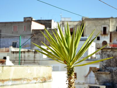 Photo for 3BR House Vacation Rental in Canosa di Puglia