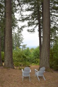 Photo for Master Bedroom, Views, Deck, Hot Tub, Minutes to Downtown