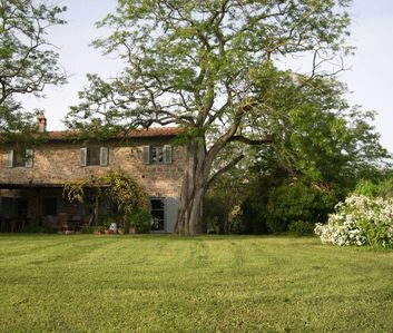 Photo for characteristic country house in the heart of Tuscany