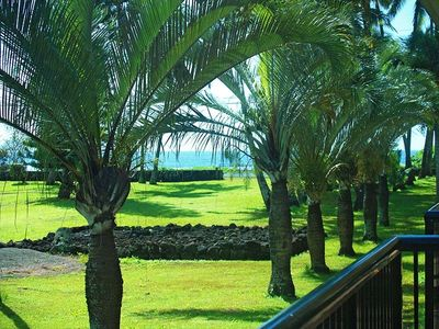 View from living room lanai of Prince Kuhio  Park and ocean beyond.