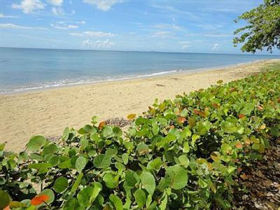 Photo for Spectacular ocean view property at Corcega Beach with amazing outdoor spaces