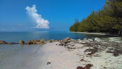 Photo for Hideawaybahamas Beach front Cottage -sandy secluded safe beach.