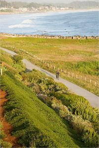 Only a 5 minute walk to the coastal trail and Surfers Beach.