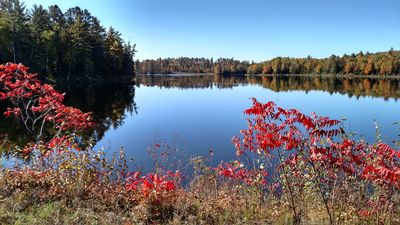 Autumn is serene and beautiful. Stay on this totally private lake & acreage.