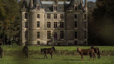 Photo for Château de l'Isle Marie, 80 hectares surrounded by woodlands and water in winter
