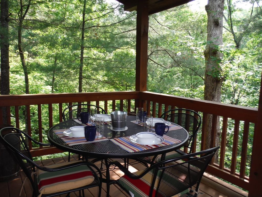 2 bedroom 1 bath pet friendly cabin between ellijay and for Ellijay cabins for rent by owner