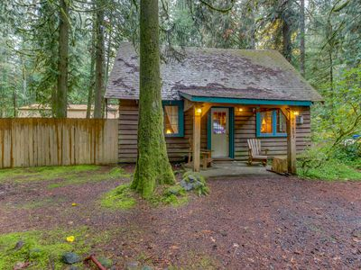 Photo for Quintessential dog-friendly cabin in the woods, within short walk of the river!