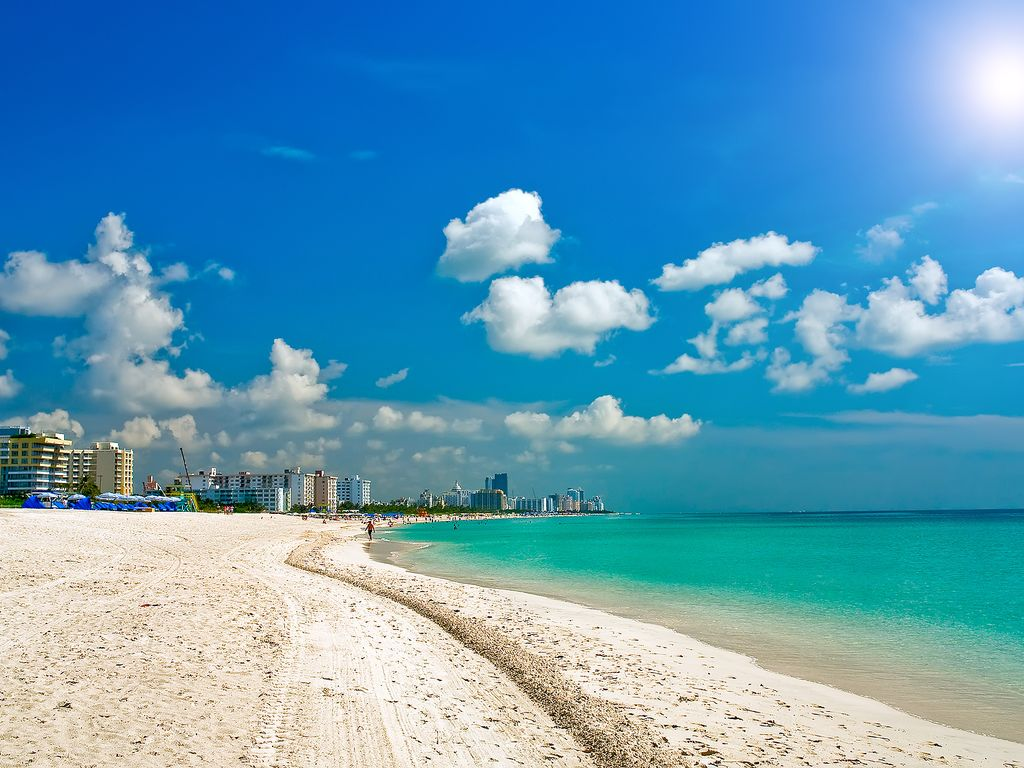 Pet Friendly North Miami Beach HomeAway Rentals