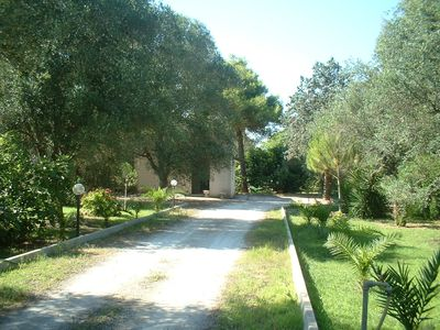Photo for COUNTRY HOUSE BETWEEN OLIVE TREES