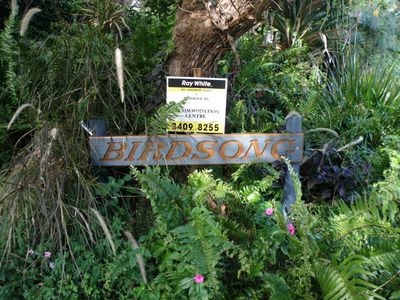Photo for Birdsong - Point Lookout, QLD
