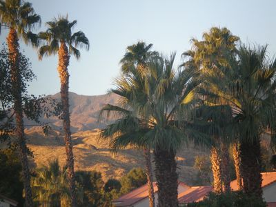 Photo for Palm Springs Heavenly Get-Away