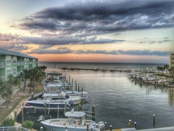 Fort Morgan Pines, Gulf Shores, Alabama, United States of America