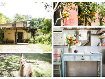 Photo for Bellingen Vintage Farm Stay: WeilHouse Living