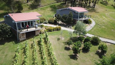 Aerial of Hilltop Spa Villas with view over property vines